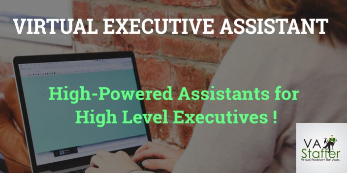 Virtual Executive Assistant